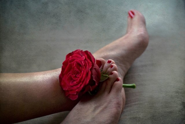Love is a mental disease, not a bed of roses: My friend had an urgent need to marry a rose (from the bouquet she recieeved from her beau ) with her perfectly manicured feet. I did the best I could, composing a picture on the spot! Their pledge for love is yet to be consummated.