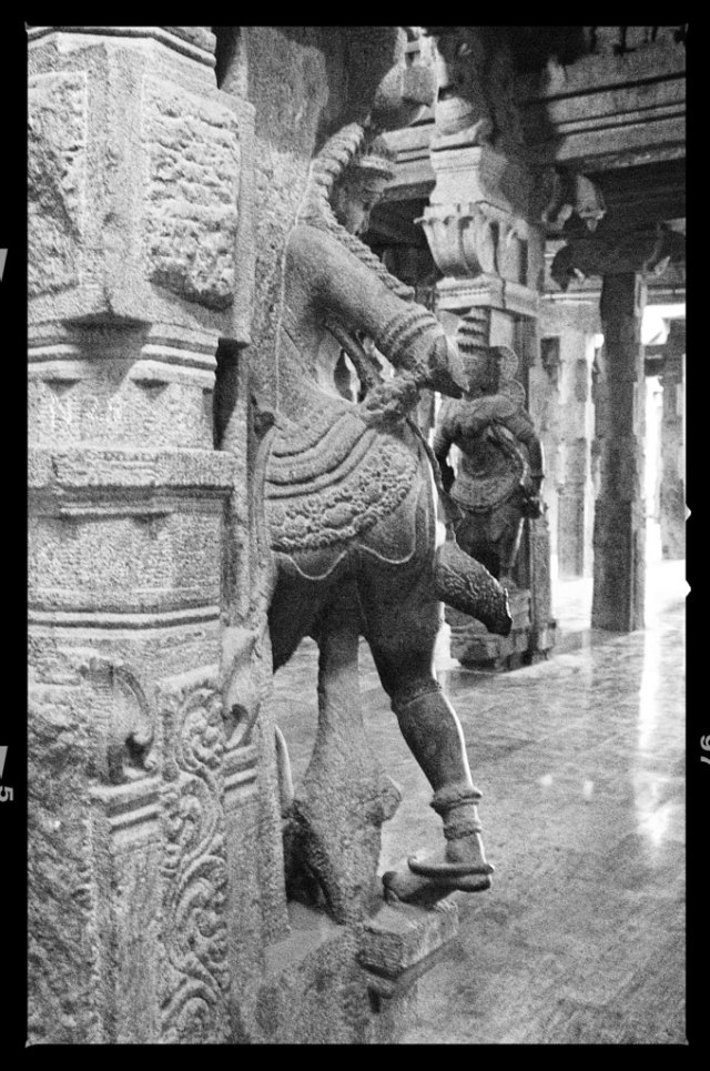 Another gorgeous view of a sculpted column in one of the corridors leading to the shrine of the goddess Parvati.